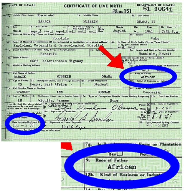 Authentic Hawaiian Birth Certificate